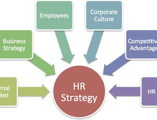 Charlotte Human Resources Consulting for Growing Businesses