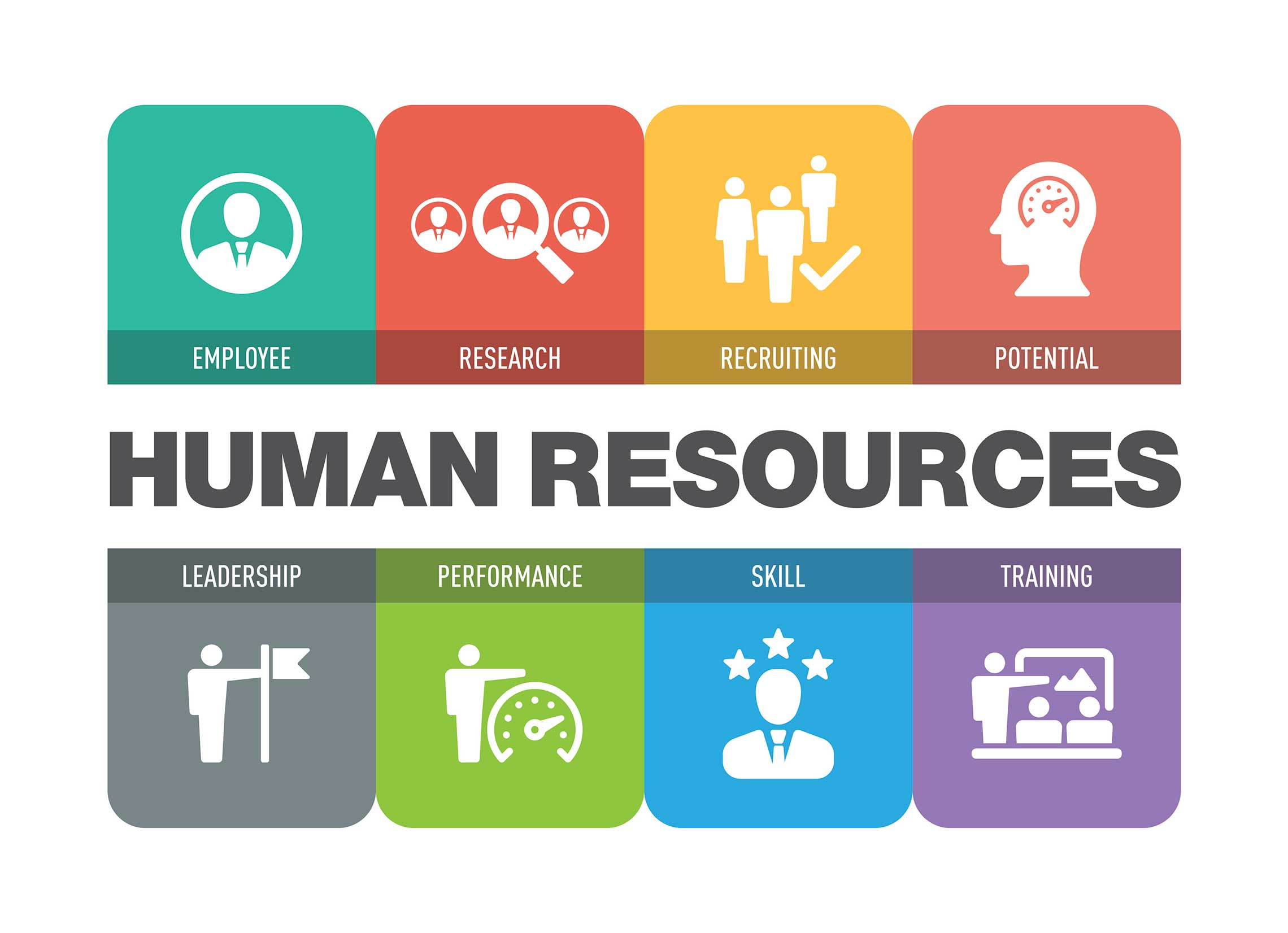 Human Resources (HR) Consulting Services North Carolina